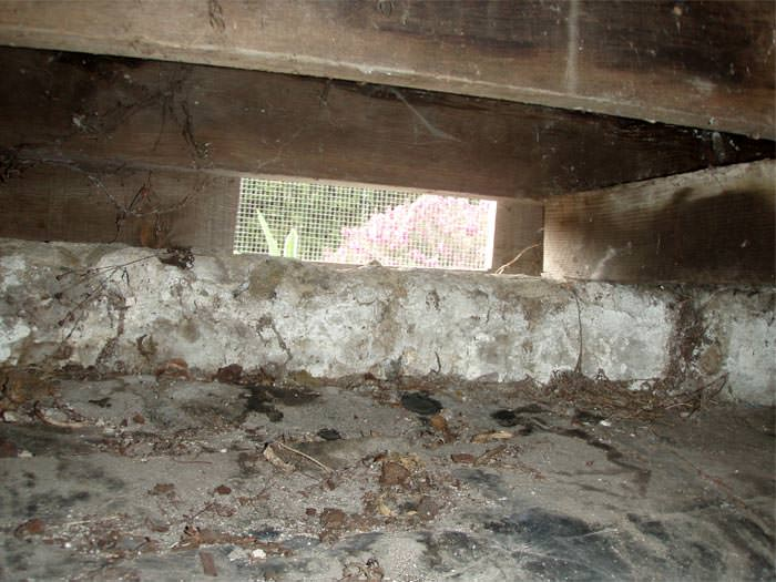 Crawl Space Repair In Mount Pleasant Charleston